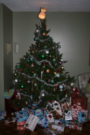 Christmas Recap & Healthy Resolutions for 2011