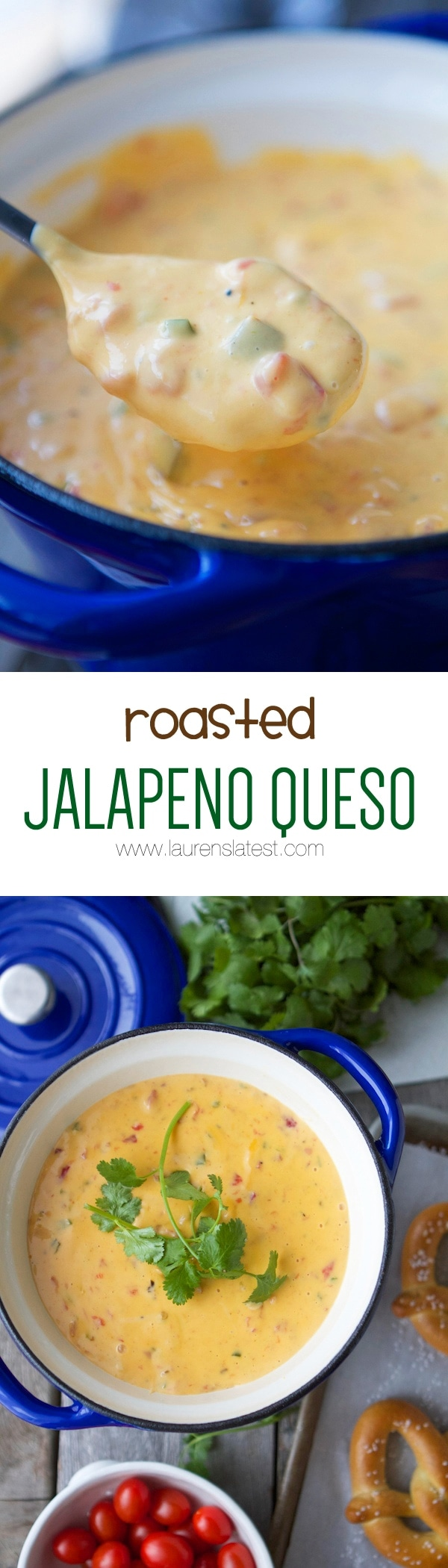 ROASTED JALAPENO QUESO