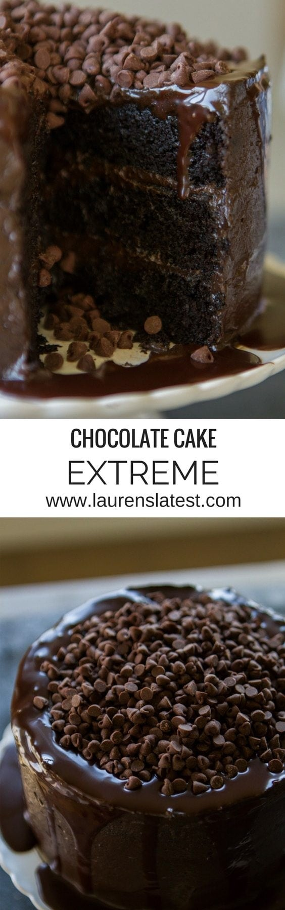 cheesecake chocolate extreme chocolate cheesecake extreme chocolate ...