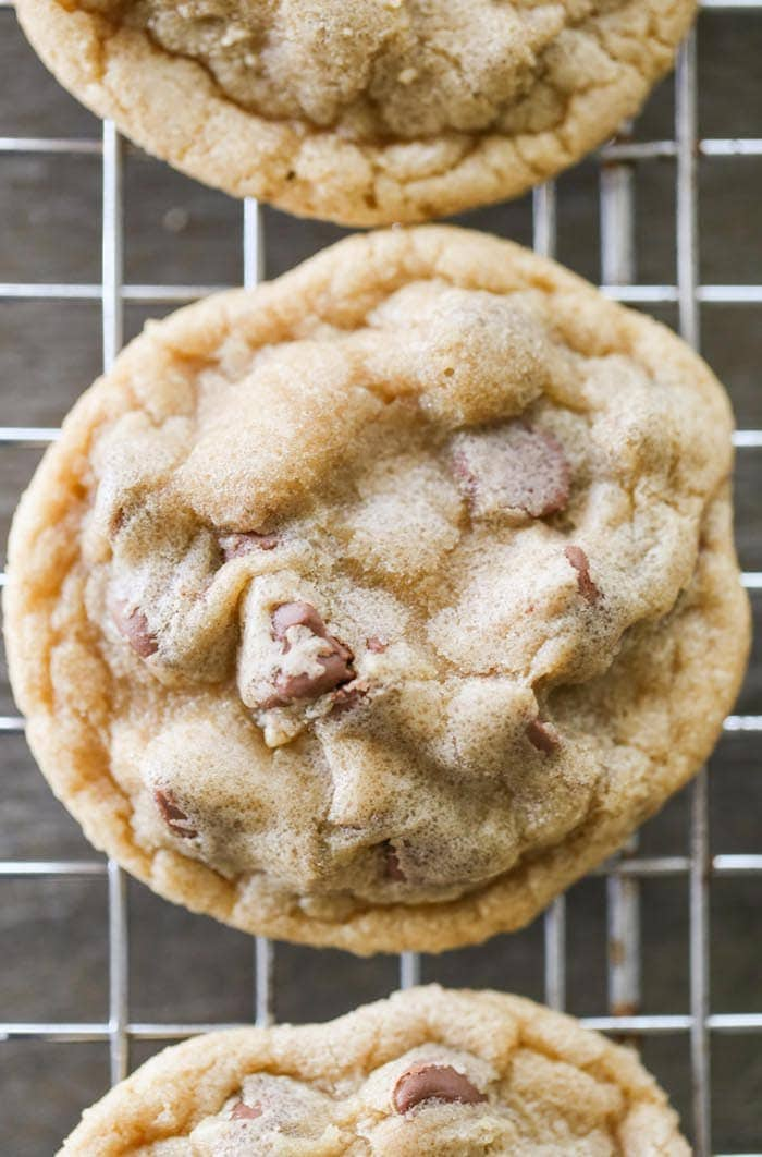 Actually Perfect Chocolate Chip Cookies are just that...PERFECT! Super soft and extra chocolatey cookies just how I think all cookies should be!