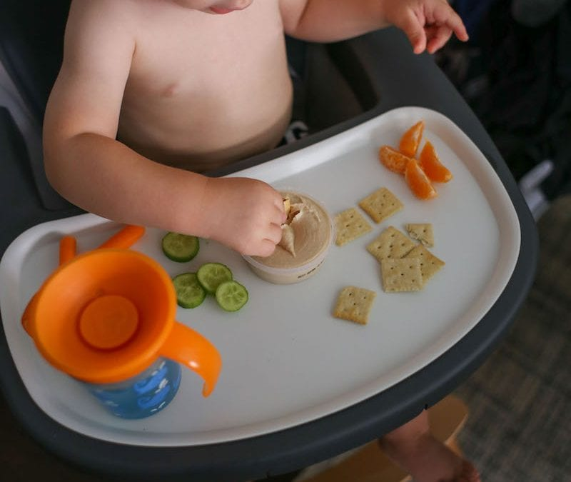 Foods to Feed a Toddler